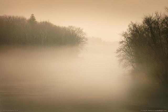 Fog on Piscataquis River, Maine