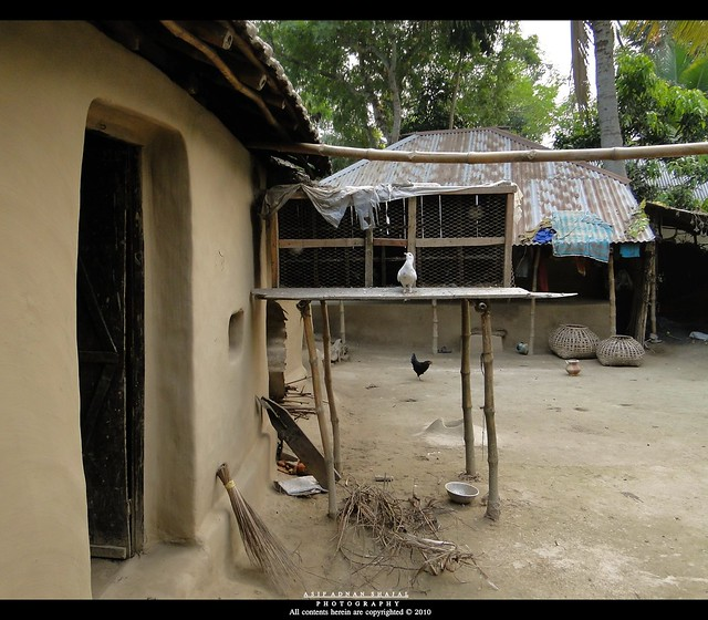 Bangladesh village traditional house a photo on flickriver for Bangladesh house picture
