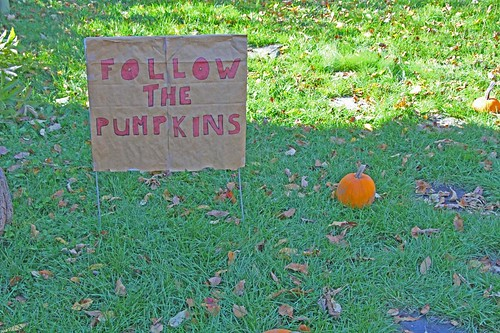 Follow the Pumpkins