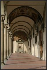 2009-07-30 Florence - Firenze - Ospedale Degli Innocenti - 7