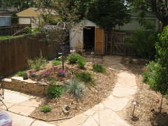 Sandstone pavers, retaining wall and xeriscape