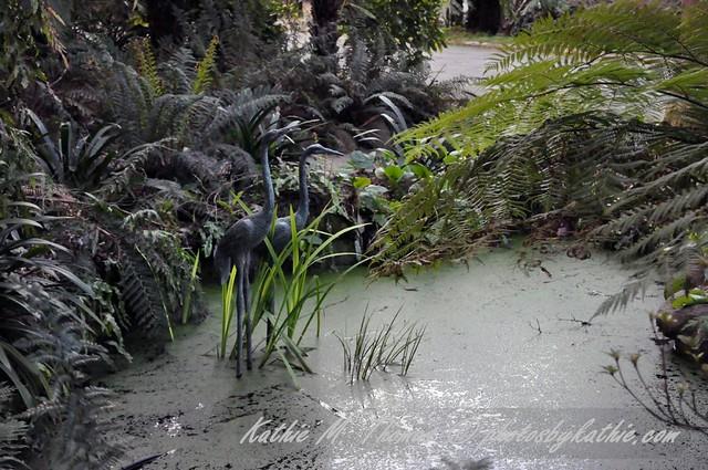 A pond at Alfred Nicholas garden