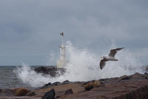 sea sky pier adult sweden gull himmel sverige splash hav pir halland mås plask kattegatt vuxen glommen dsc5704 theperfectphotographer atranswe absolutelystunningscapes 56°53′0n12°30′0″e