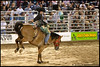 Cowtown Rodeo Saddle Bronco Riding
