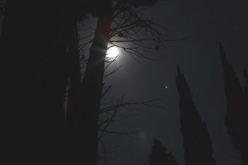 It's a Dark Dark World