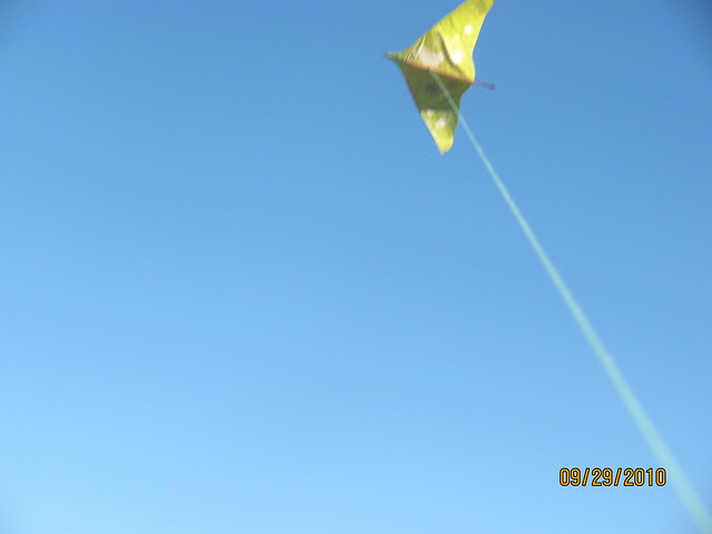 Painted kite flying 2