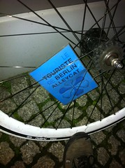 Berlin Alleycat