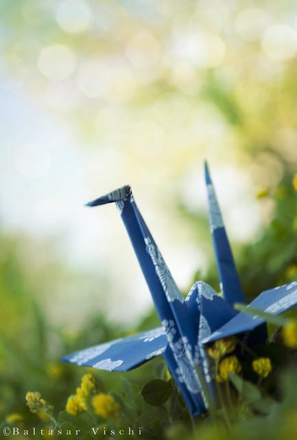 La Grulla azul