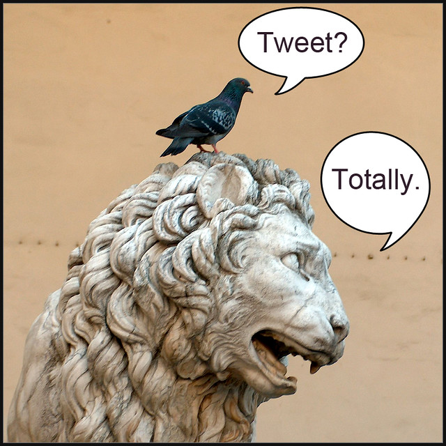 Totally Tweet. from Flickr via Wylio