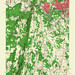 West Springfield Quadrangle 1958 - USGS Topographic Map 1:24,000