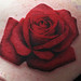 Rose by Lucky Bamboo Tattoo
