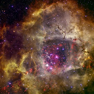 Rosette Nebula (NASA, Chandra, 09/08/10) [EXPLORED]