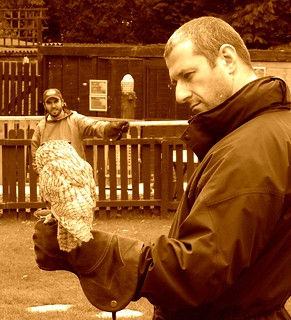 Me with one of the Owls at the Falconry Centre