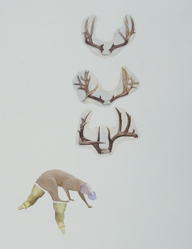 "Misako Inaoka ""Antlers and Earaid"""