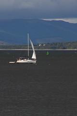 Great Cumbrae Island 23