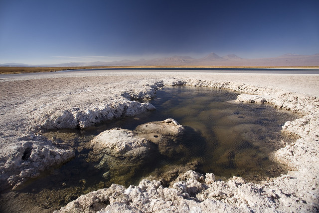 Laguna Chaxa, Atacama, Chile