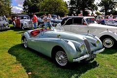 race car, automobile, jaguar xk120, jaguar xk140, vehicle, automotive design, antique car, classic car, vintage car, land vehicle, luxury vehicle, convertible, sports car,