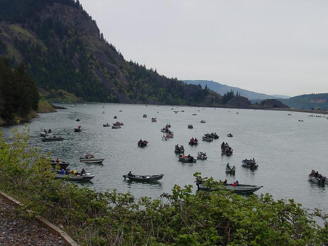 Drano Lake Salmon Fishing | Flickr - Photo Sharing!