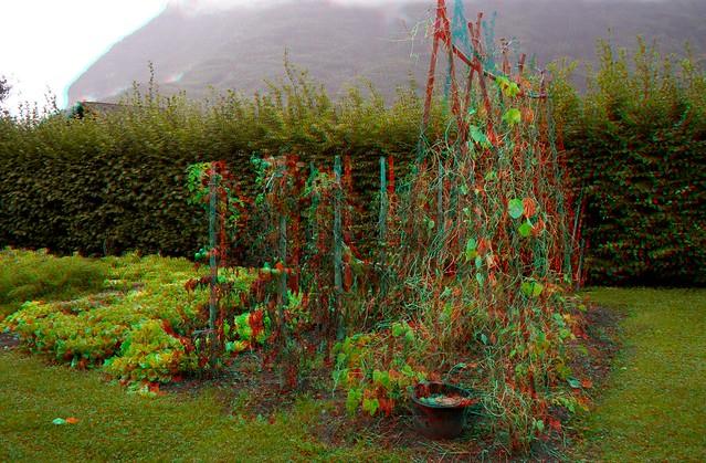 Le jardin du voisin en 3d