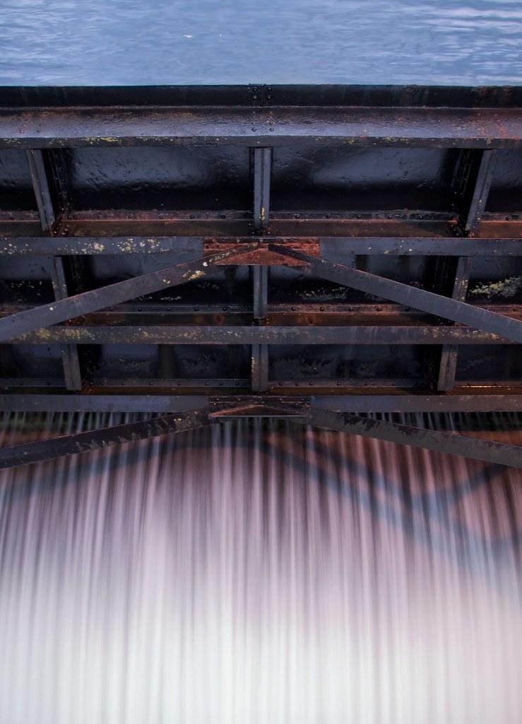 Photos of ballard locks spillway hiram m chittenden for Ballard locks fish ladder