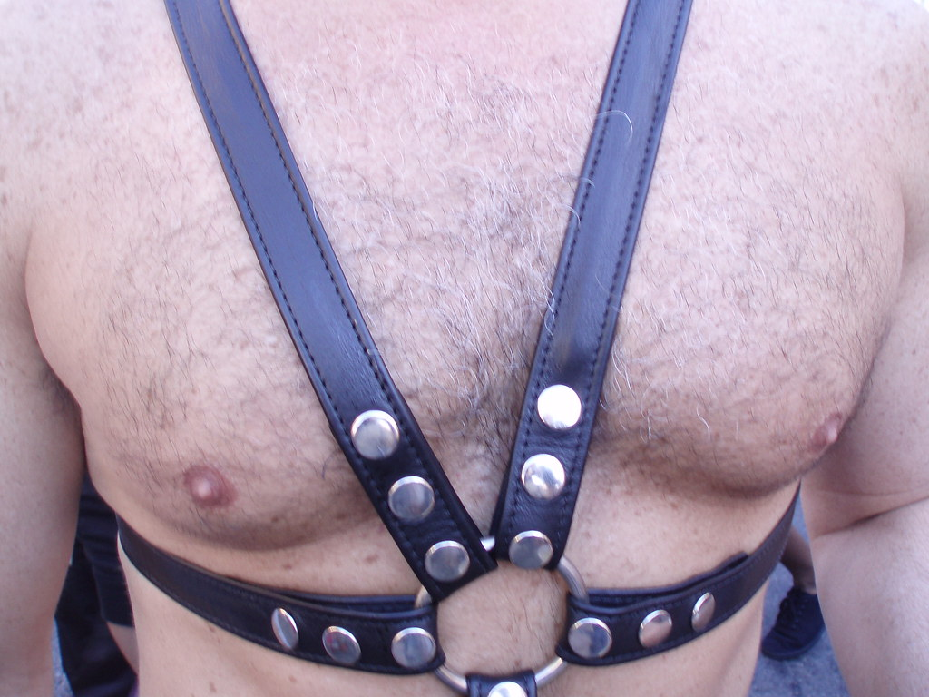 HAIRY & HARNESS CHEST ! FOLSOM STREET FAIR  2010 ! ( safe photo )