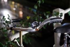 Bikes of Delft