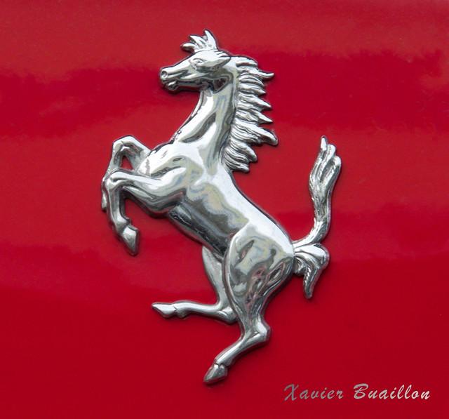 Xavier Buaillon Blason Ferrari Chrome