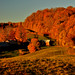 Jenne Farm Autumn Sunrise 1