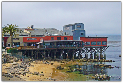 FishHopper on Cannery Row by Old Jingleballicks