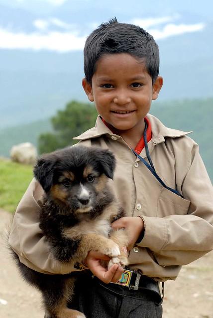 Alabama Dog Rescue ADOPTIONS RescueMeOrg