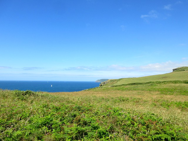 South Coast Path Hike: East Prawle Route