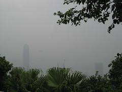 View Hindered by Pollution
