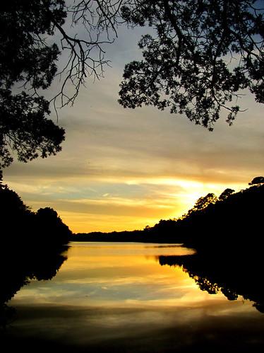 new trees sunset lake mirror jersey brownsmills