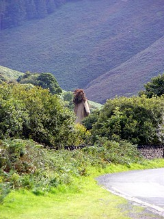 Sulby Glen  - a figure in the distance