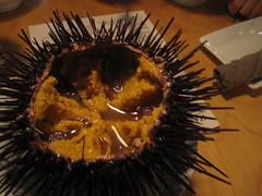 animal(0.0), chestnut(0.0), eyelash(0.0), produce(0.0), sea urchin(1.0), echinoderm(1.0), food(1.0), close-up(1.0),