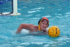 water & ball sports(1.0), water polo(1.0), swimming(1.0), sports(1.0), recreation(1.0), outdoor recreation(1.0), leisure(1.0), team sport(1.0), swimmer(1.0), water sport(1.0), ball game(1.0),