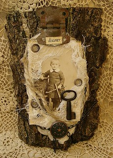assemblage on tree bark