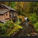 Cedar Creek Grist Mill, WA......