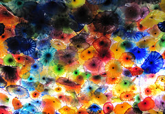 I can die happy now, I've seen the Chihuly glass in Bellagio
