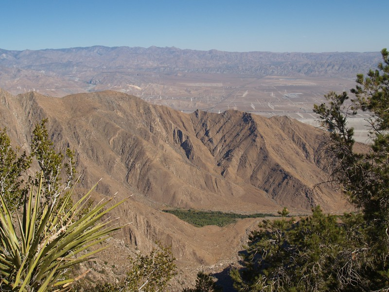We finally pop up on the top of the ridge, and can look down into Chino Canyon where the tram road climbs.