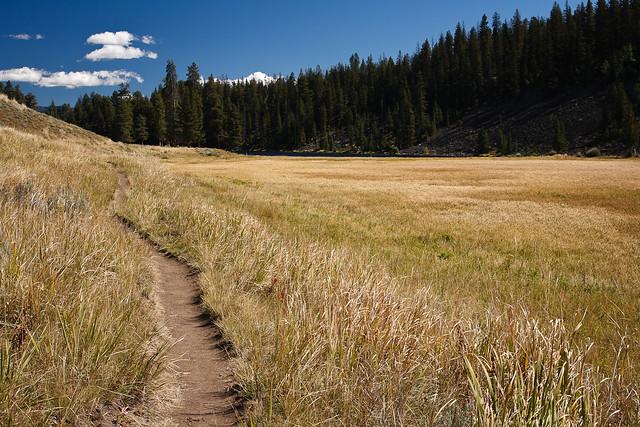 A walk in Yellowstone