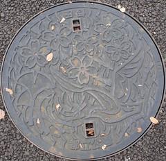 Japan2010-52-012