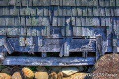 Decaying shingles on the boathouse
