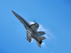 FA-18F Super Hornet demonstration