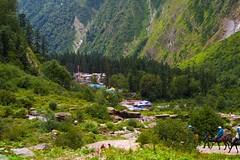 India: Himalaya Ghangaria