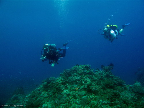 Divers and Diversity