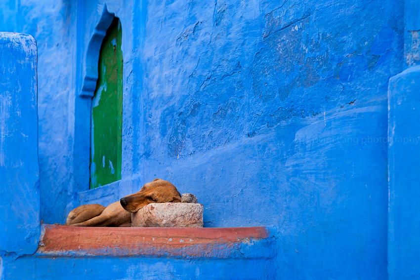 Pillow. Jodhpur, India