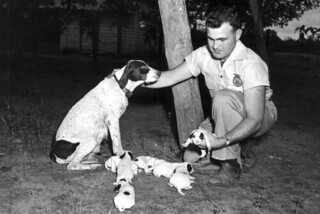 Forrest Davis Jr. with a dog and puppies: Quincy, Florida