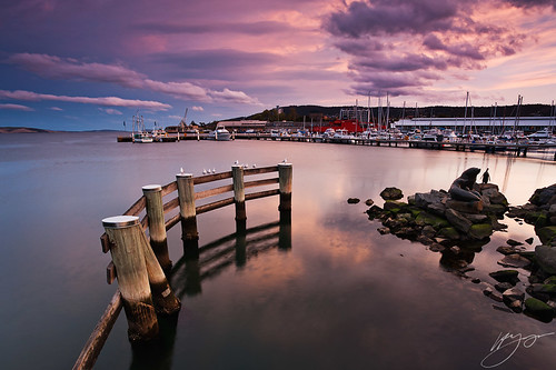 sunset seagulls clouds waterfront harbour wharf tasmania yachts hobart auroraaustralis nikond700