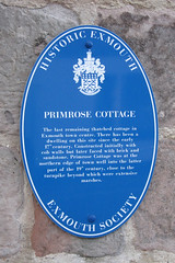 Photo of Blue plaque number 4462